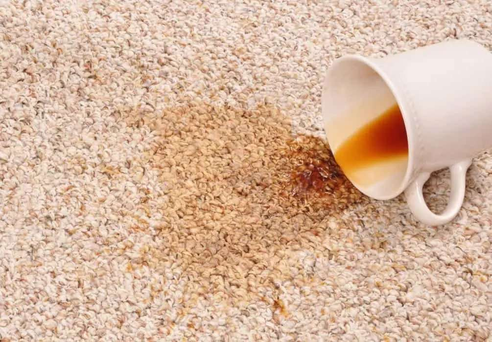 10 Best Tips to Remove Stains from Carpets