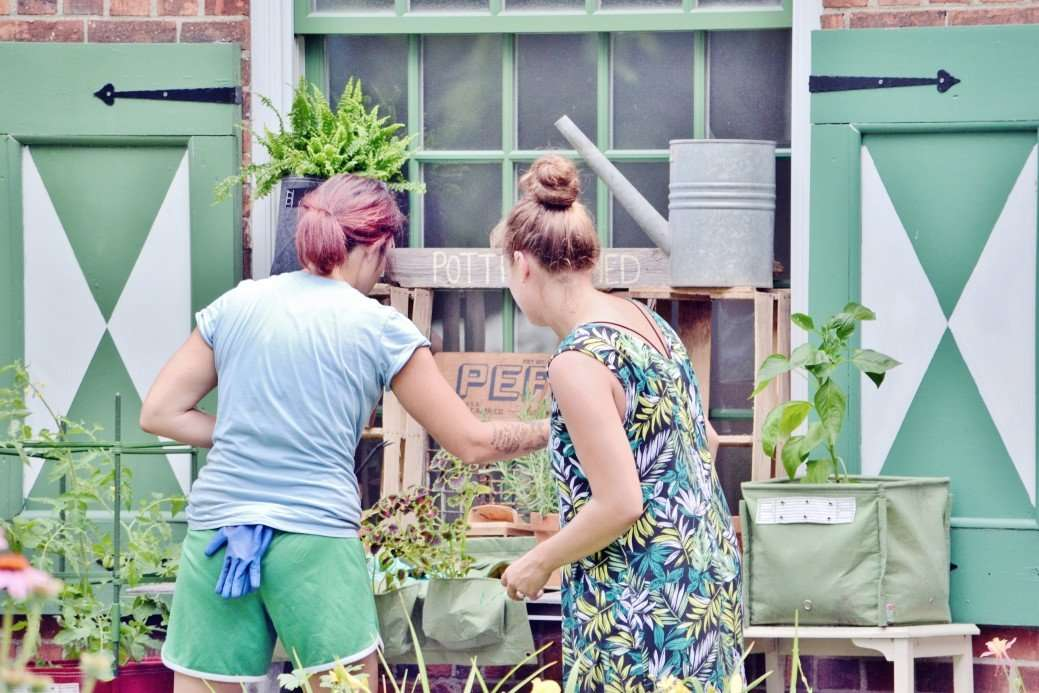 7 Simple Tips to Further Improve Your Gardening Experience
