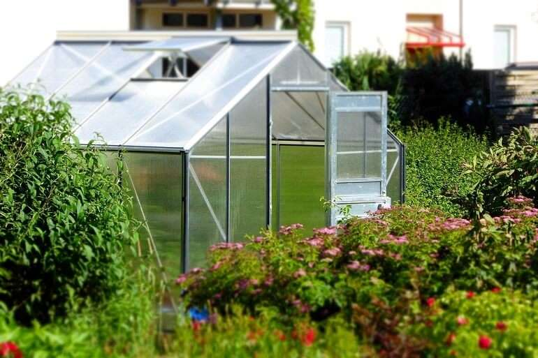 A Complete Guide to Building Your Own Greenhouse Garden