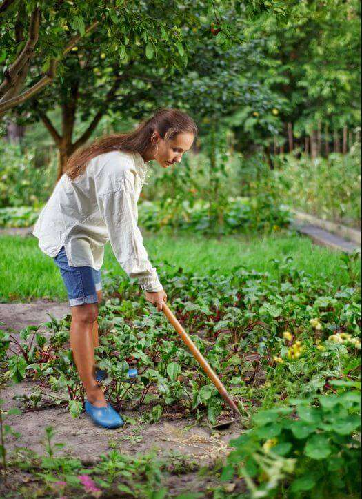 Embrace the Work in Your Garden