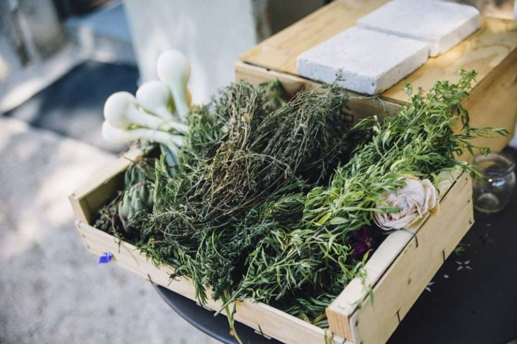 Further improve your gardening experience by planting kitchen herbs.