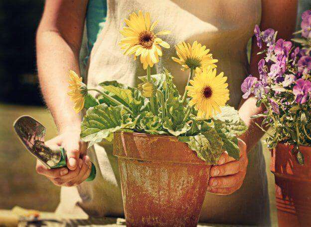 Improve your gardening experience by sharing your bounty with friends and family.