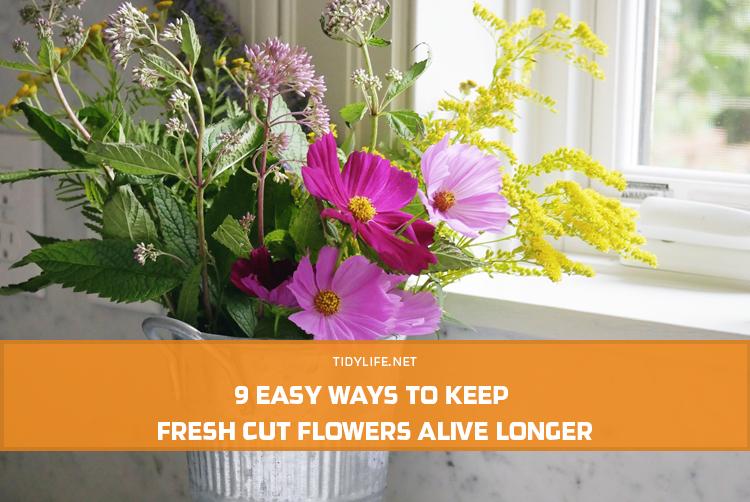9 Easy Ways to Keep Fresh Cut Flowers Alive