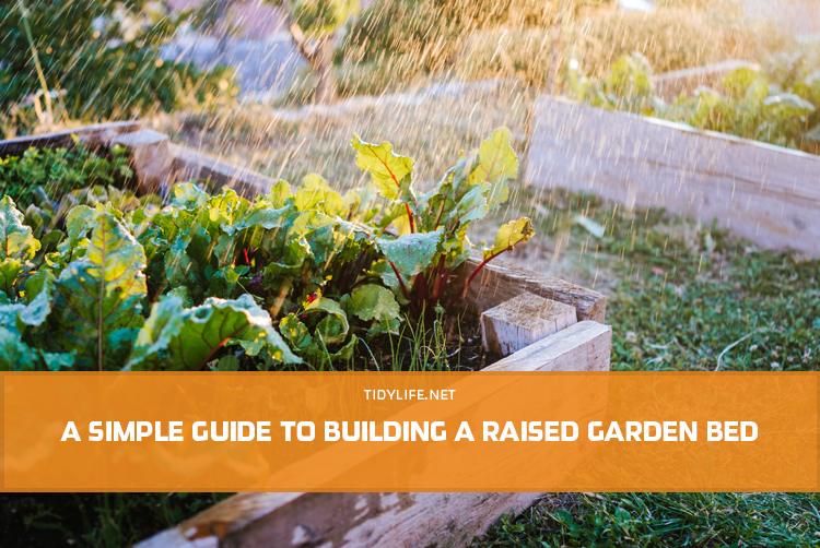 A Simple Guide to Building a Raised Garden Bed
